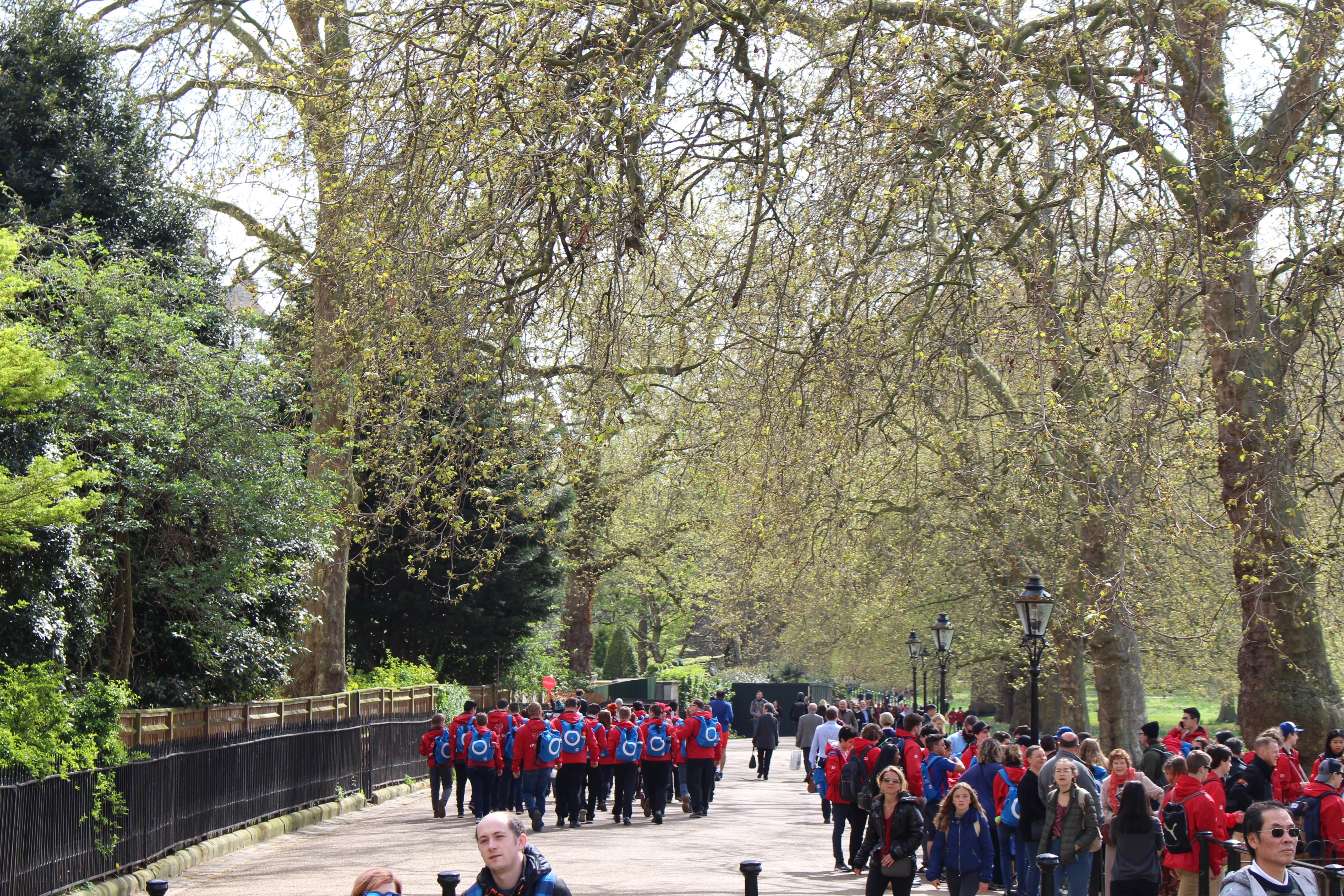 Tour groups walking on path in parks