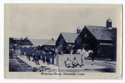Front of a postcard, it features a picture of the horses watering station at Shorncliffe Camp.