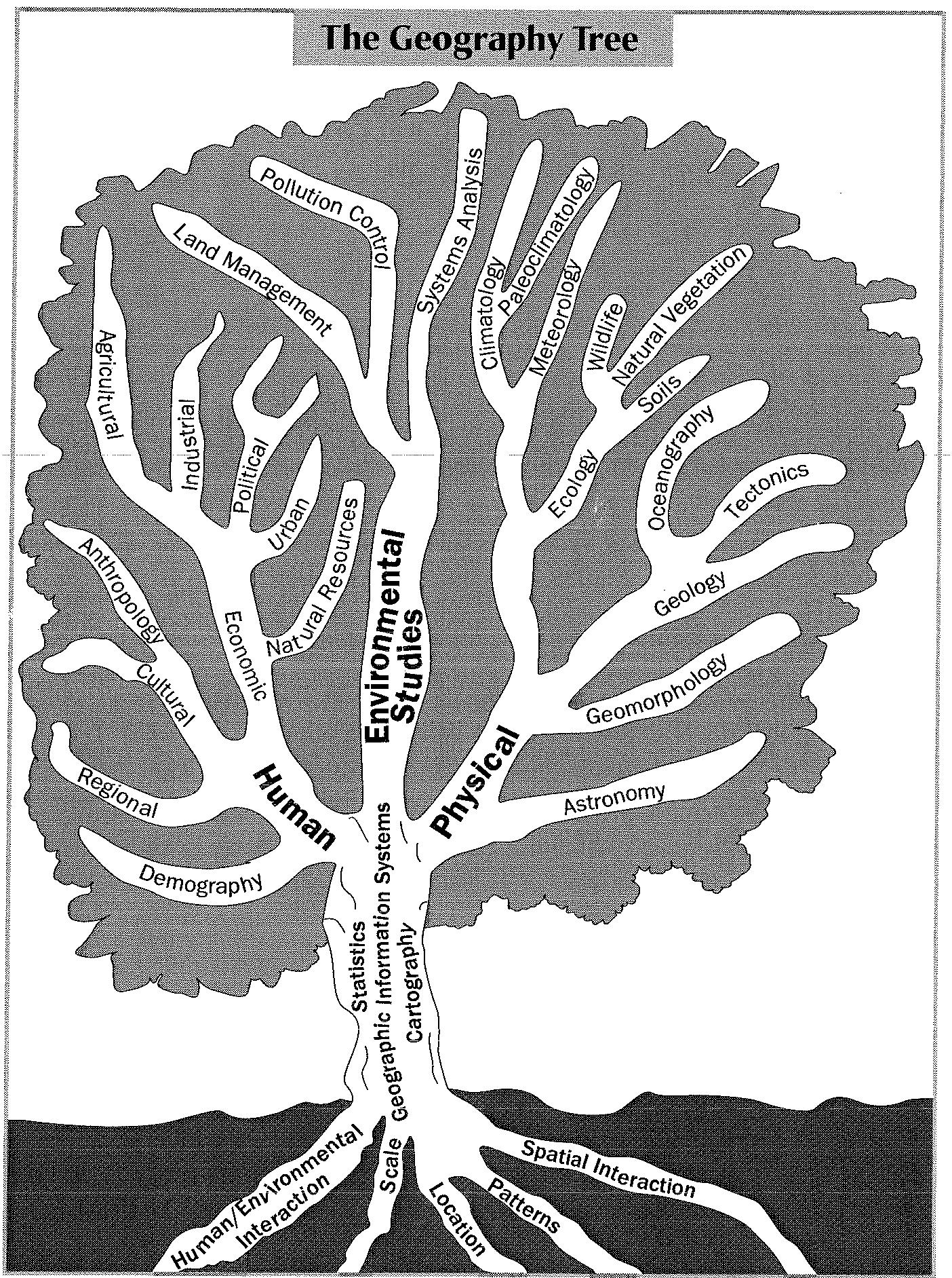 Geography Tree.JPG